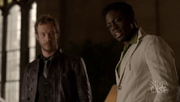Wikia Fae - The Ash interrogating Bo