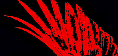 Why You Should Be Reading the 'Red Rising' Trilogy
