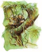Wild elf art