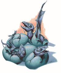 Dracheneier