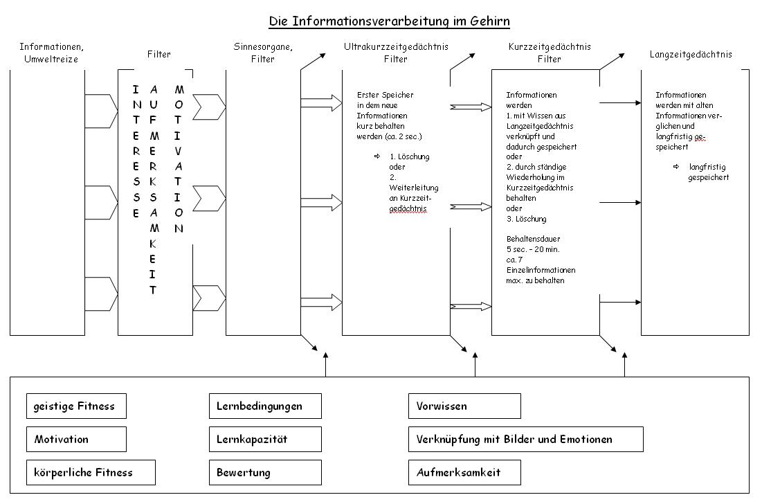 Infoverarbeitung