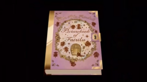 Picturebook of Fairilu