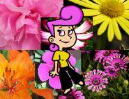Wanda by Cookie Lovey