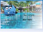 Fop-postcard-4x3-3