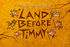 Titlecard-Land Before Timmy