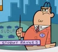 Stormyraynes
