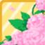 RDS Beautiful Rose Garden