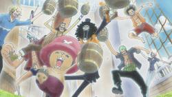 Pirates Anime Infobox