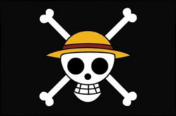 Flag of the Straw Hat Pirates