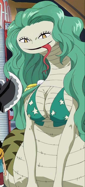 Snake-Snake Fruit, Model: Anaconda | The Fairy One Piece