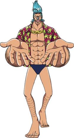 Franky Anime Pre Timeskip Infobox