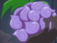 Dark Yami Cursed Fruit Anime Infobox