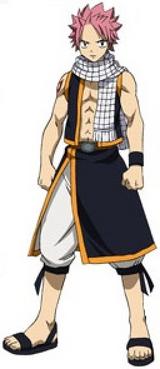 Natsu Anime Pre Timeskip Infobox