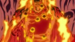 Magma Magma Fruit Anime Infobox