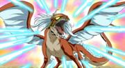 Dragon Iris
