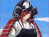 Armure du Samouraï