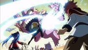 Edo-Lucy attaque le crapaud