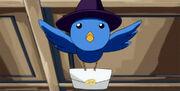 Oiseau Magique