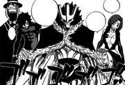 L'équipe d'élite de Raven Tail