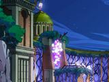 Crocus Garden