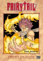 Fairy Tail Tome 19 Fr Spéciale