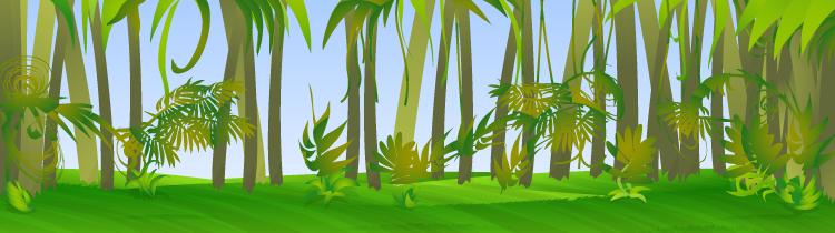 Bg rainforest