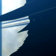 Big hat unnamed chairman