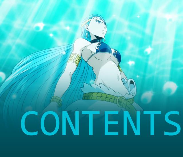 Contents 29
