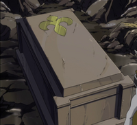 Will Neville's coffin
