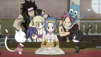 E.N.D. researched by Fairy Tail