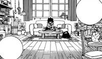 Gray despierta en la casa de Roka