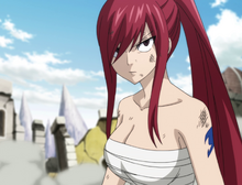 Erza ready for the final fight