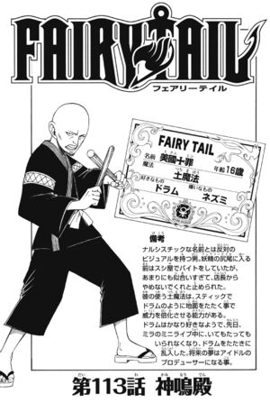 Cover 113