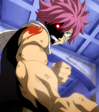 Natsu vows to protect the future