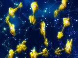 Ключи Звёздных Духов
