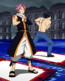 Las cartas de Natsu y Gray preparadas para la batalla
