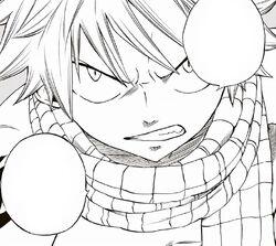Natsu promete proteger a sus compañeros