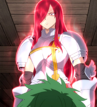 Erza explains the meaning of a guild