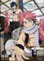 Natsu-and-Gray-fairy-tail-8274529-1275-1755