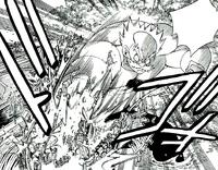 Makarov attacking Grimoire Heart's airship