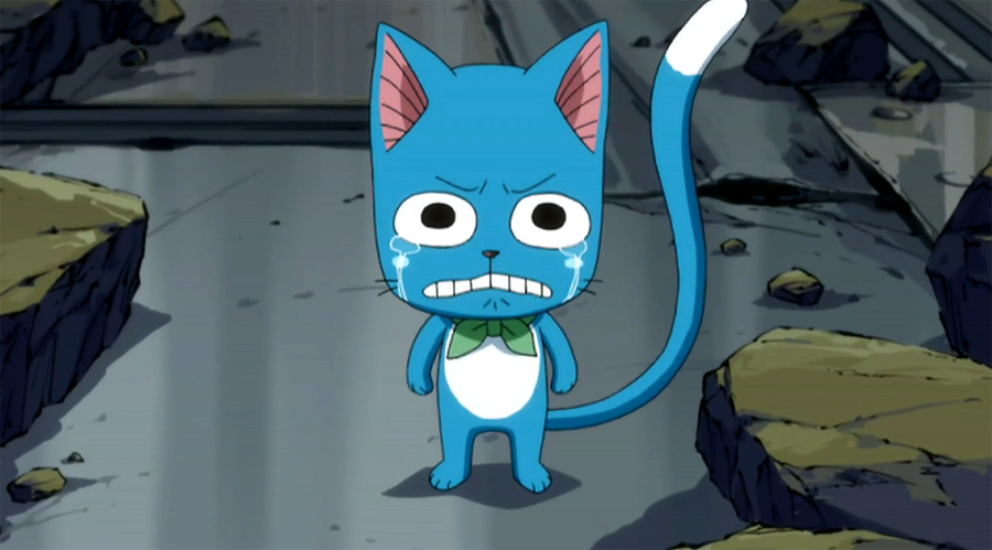 Happy cries, when he saw Natsu is loosing