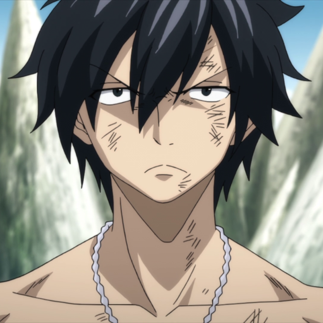 The Fiction Diaries: G is for Gray Fullbuster