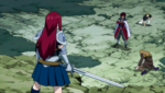 Cobra vs. Erza's Group