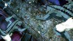 Fairy Tail vs Lizardmen
