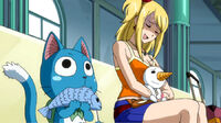 Happy and Lucy watches Gray and Natsu's fight