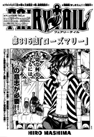 Cover 315