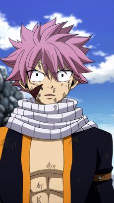 Natsu se entera que él es E.N.D.