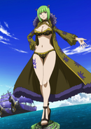 Brandish shrinks the island