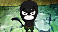 Scardey Cat Pantherlily