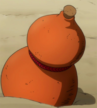 Bacchus' drinking gourd